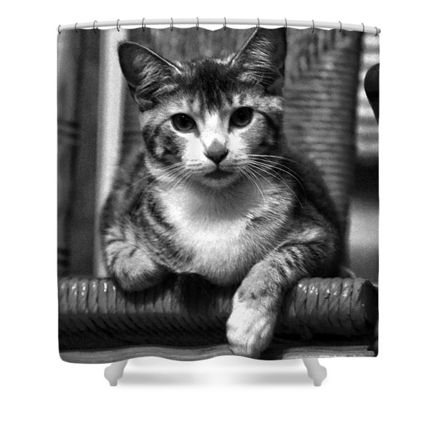 Lucy 2 Bw Shower Curtain