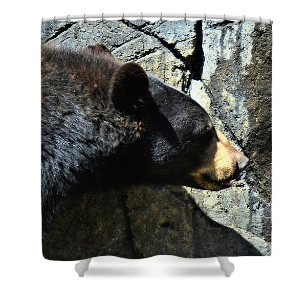 Lumbering Bear Shower Curtain