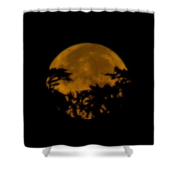 Lunar Crown Shower Curtain