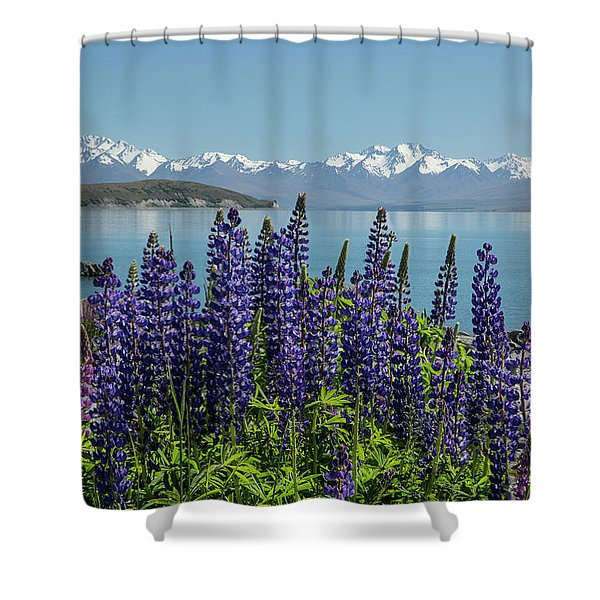 Lupines At Lake Tekapo Shower Curtain
