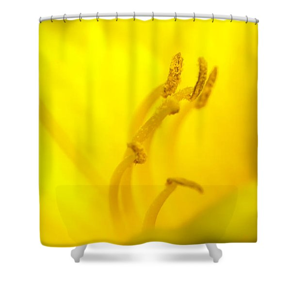 Luscious Yellow Shower Curtain