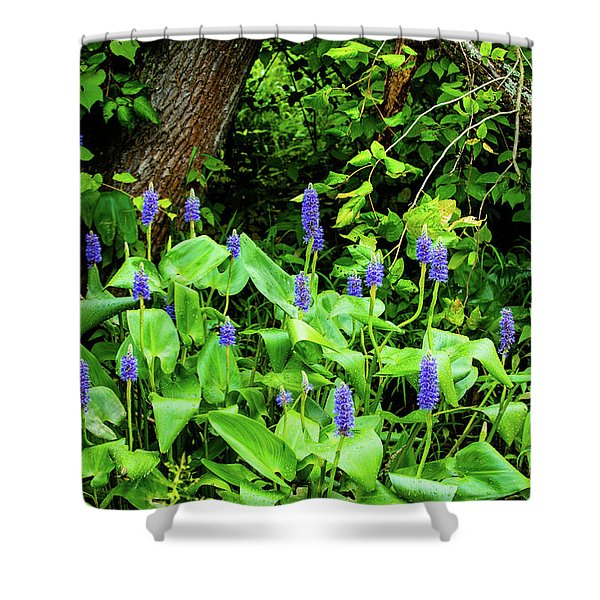 Lush Purple Flowers In The Woods Shower Curtain