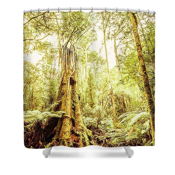 Lush Tasmanian Forestry Shower Curtain