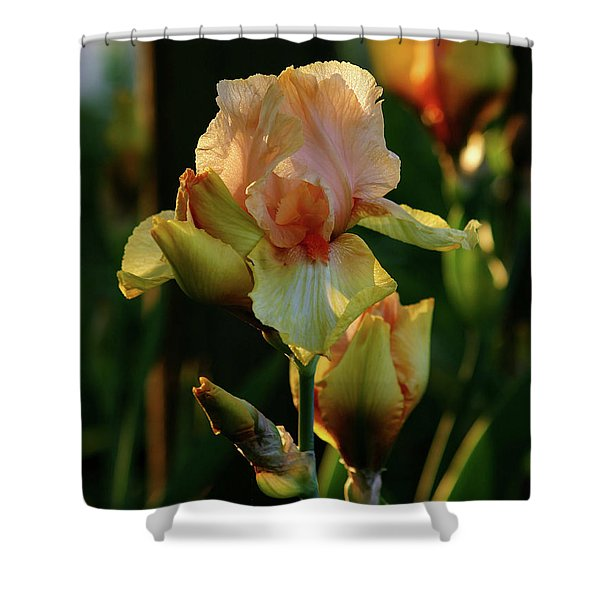 Luxurious Nature 6764 H_2 Shower Curtain