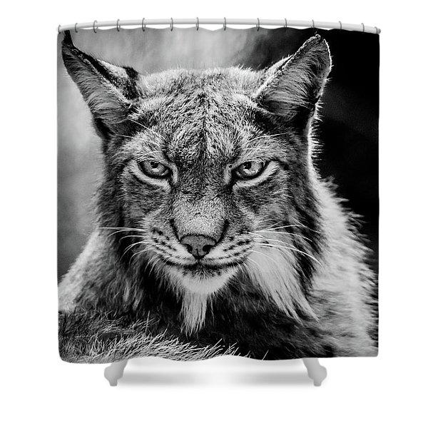 Lynx Portet Shower Curtain