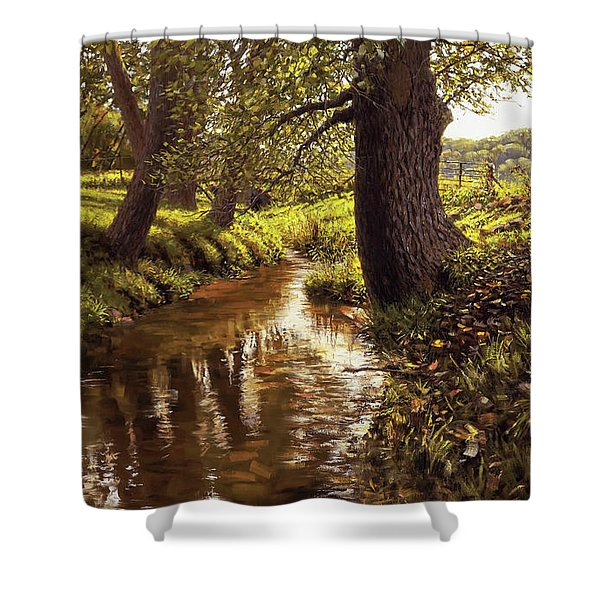 Lyon Valley Creek Shower Curtain