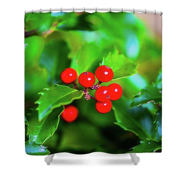 Macro Berries - 1202 Shower Curtain