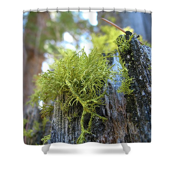 Macro Life Shower Curtain