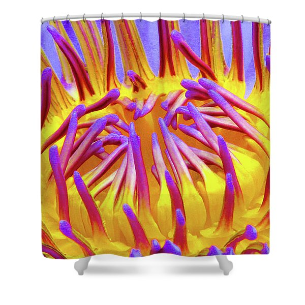 Macro's Lotus Shower Curtain