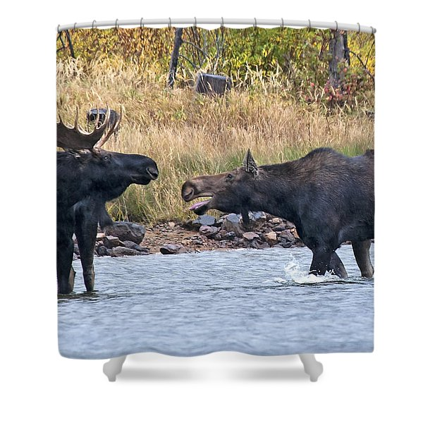 Mad Mamma Moose Shower Curtain