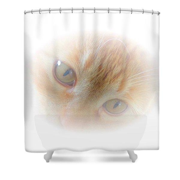 Magic Eyes Shower Curtain