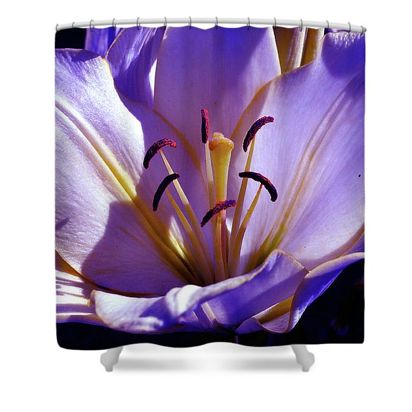 Magic Floral Poetry Shower Curtain