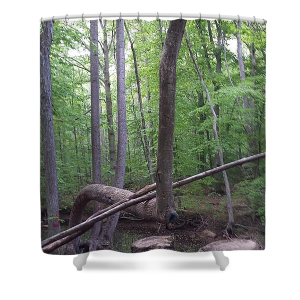 Magical Forest Shower Curtain