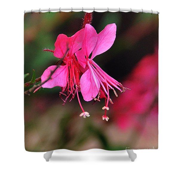 Shower Curtain featuring the photograph Magnificence by Gerlinde Keating - Galleria GK Keating Associates Inc