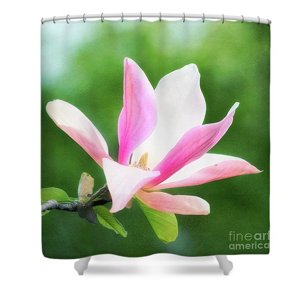 Magnificent Daybreak Magnolia At Day's End Shower Curtain