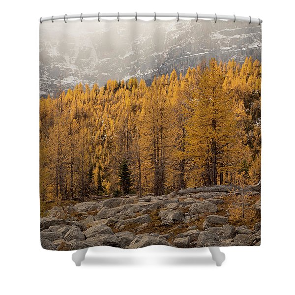 Magnificent Fall Shower Curtain