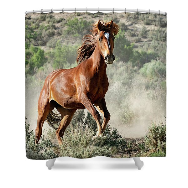 Magnificent Mustang Wildness Shower Curtain
