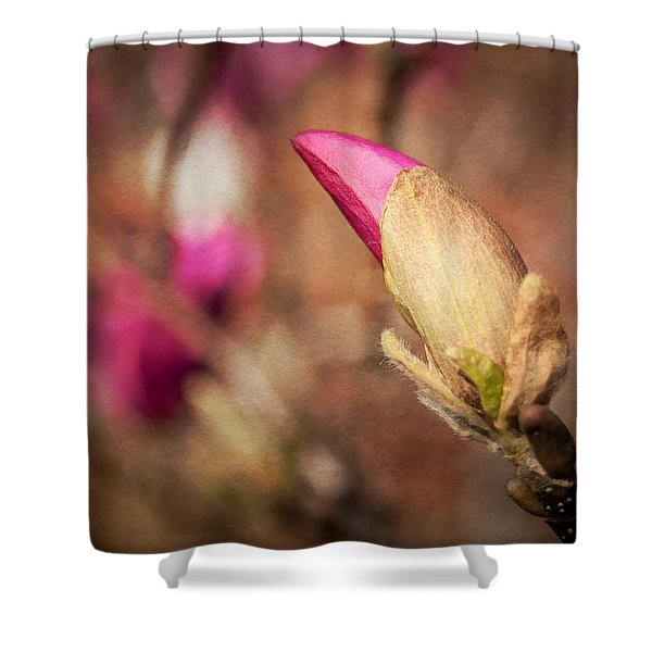 Magnolia Bud Artified Shower Curtain