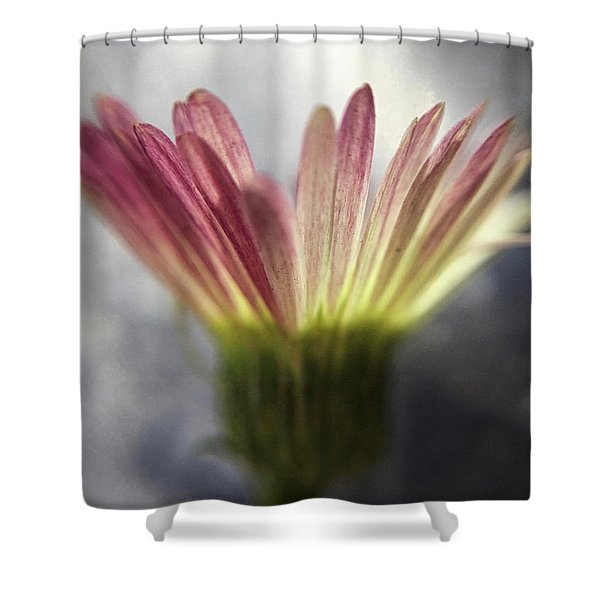 Magritte's Drop Shower Curtain