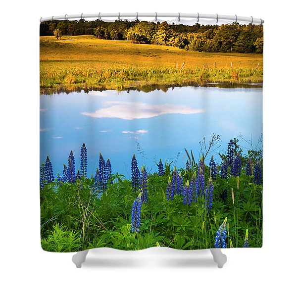 Shower Curtain featuring the photograph Maine Field Of Lupines by Ranjay Mitra