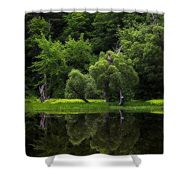 Maine Reflections Shower Curtain