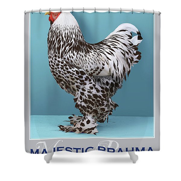 Majestic Brahma Silver Spangled Shower Curtain
