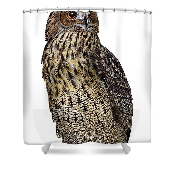 Majestic Eurasian Northern Eagle Owl Bubo Bubo - Hibou Grand-duc - Buho Real - Nationalpark Eifel Shower Curtain