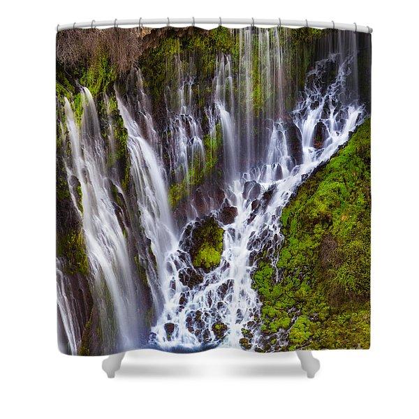 Majestic Falls Shower Curtain