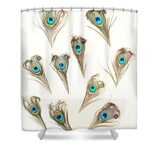 Majestic Feathers Shower Curtain