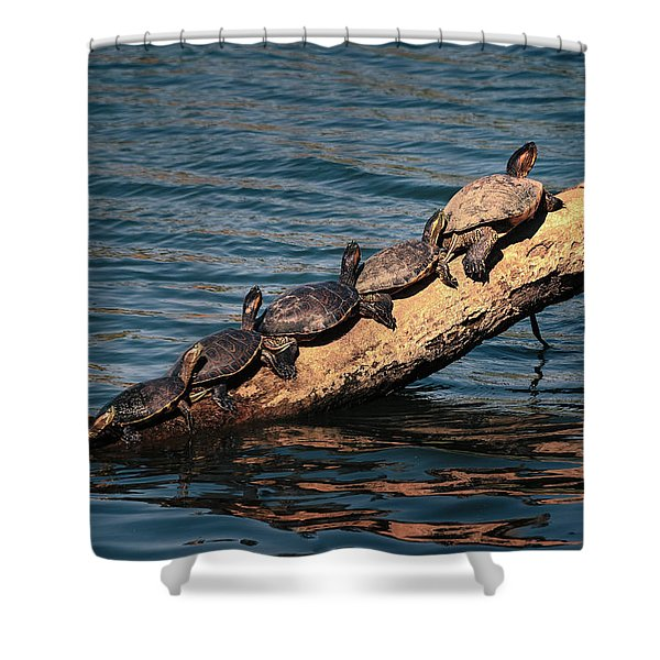 Make Room For Me Shower Curtain