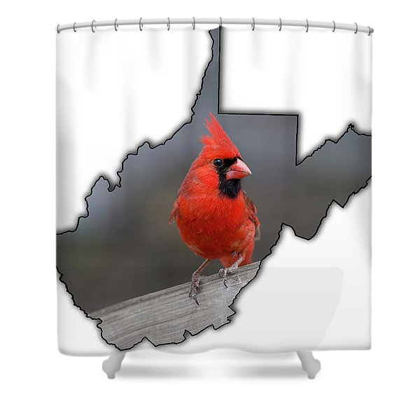 Male Cardinal One Of The Most Recognizable Birds Shower Curtain