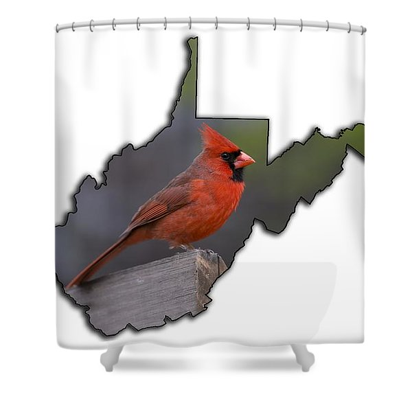 Male Cardinal Perched On Rail Shower Curtain
