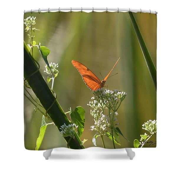 Male Julia Heliconia Butterfly Shower Curtain
