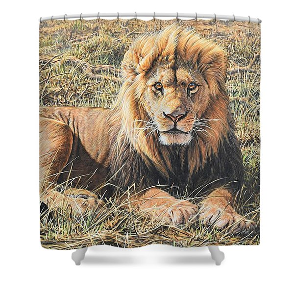 Shower Curtain featuring the painting Male Lion Portrait by Alan M Hunt