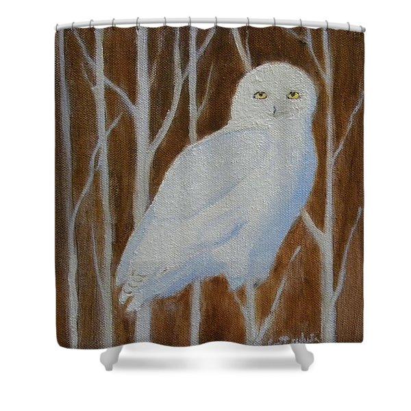 Male Snowy Owl Portrait Shower Curtain