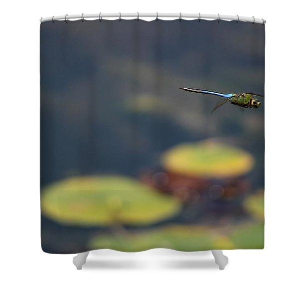 Malibu Blue Dragonfly Flying Over Lotus Pond Shower Curtain