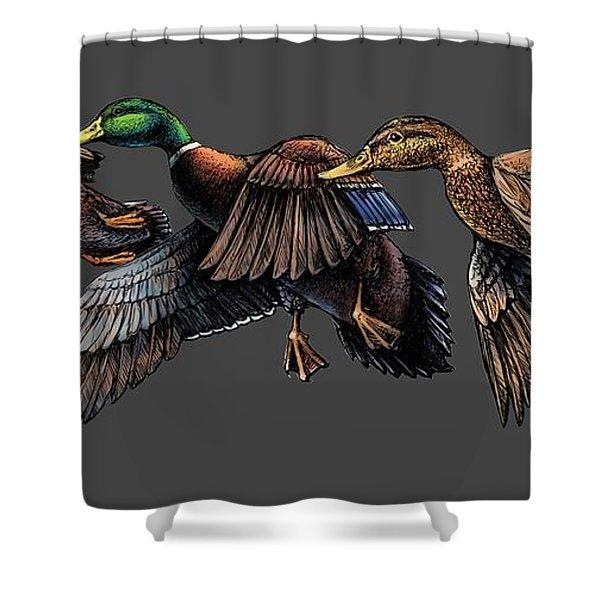 Mallard Ducks In Flight Shower Curtain