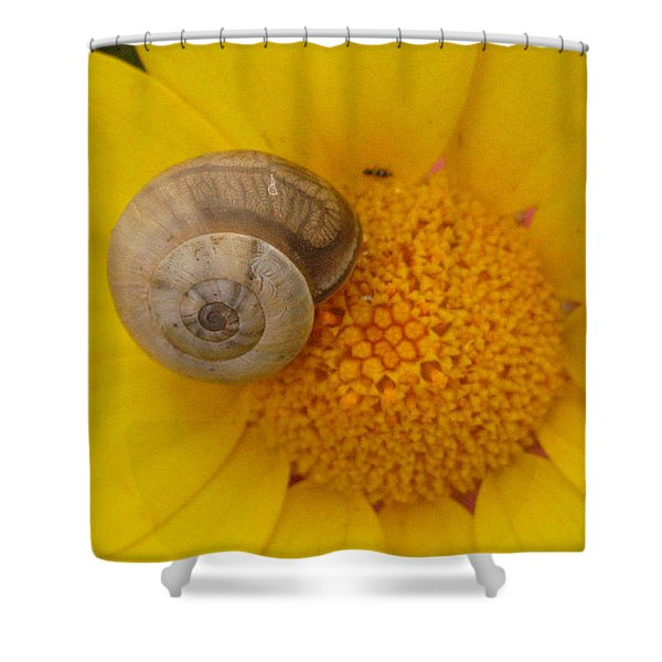 Malta Flower Shower Curtain
