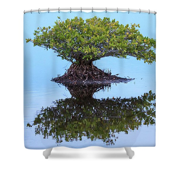 Mangrove Reflection Shower Curtain
