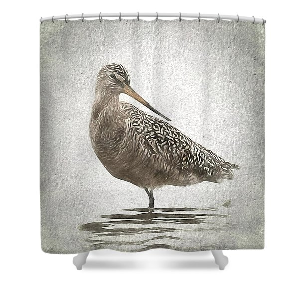 Marbled Godwit Shower Curtain