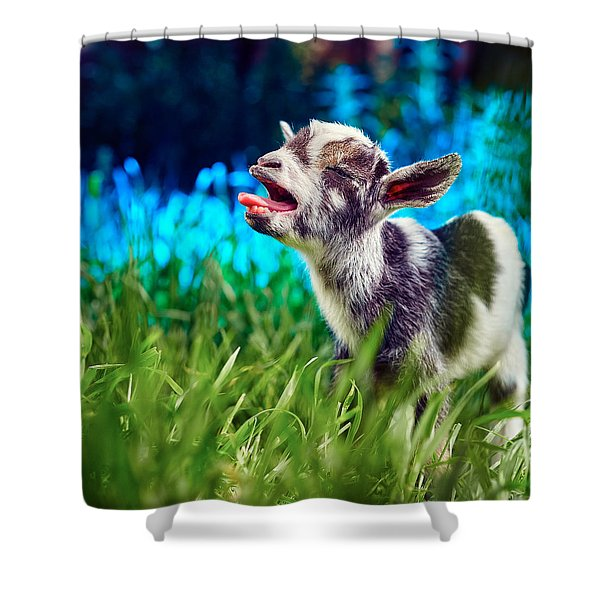 Baby Goat Kid Singing Shower Curtain