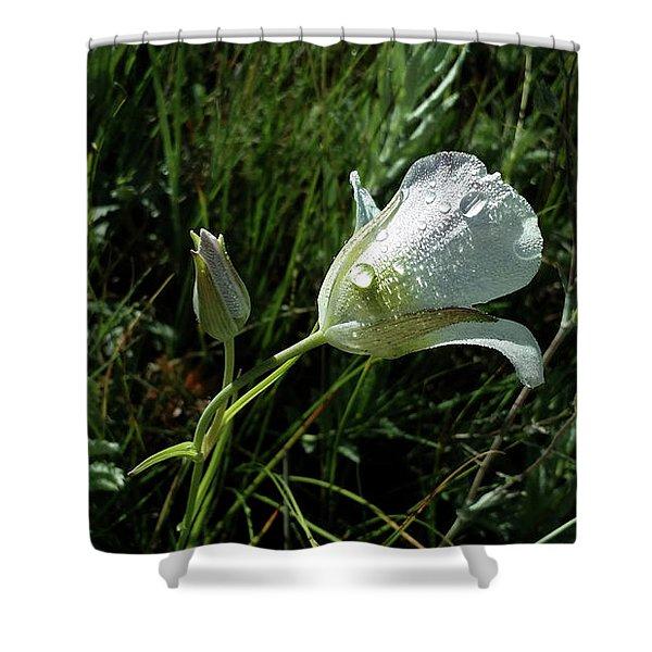 Mariposa Rocky Mountain Meadow  Shower Curtain
