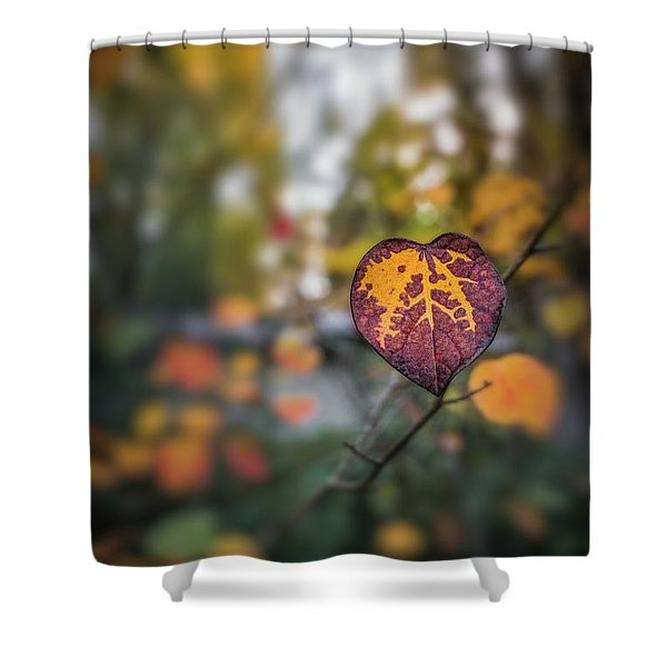 Marked Shower Curtain