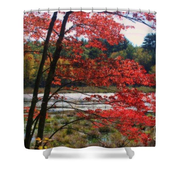 Marsh In Autumn Shower Curtain