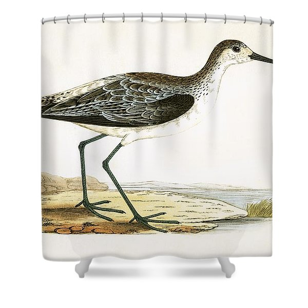 Marsh Sandpiper Shower Curtain
