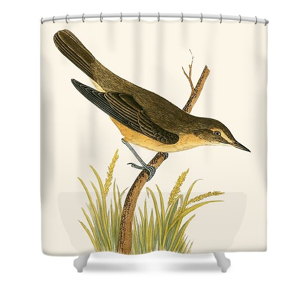 Marsh Warbler Shower Curtain