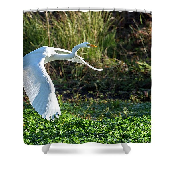 Marshy Flight  Shower Curtain
