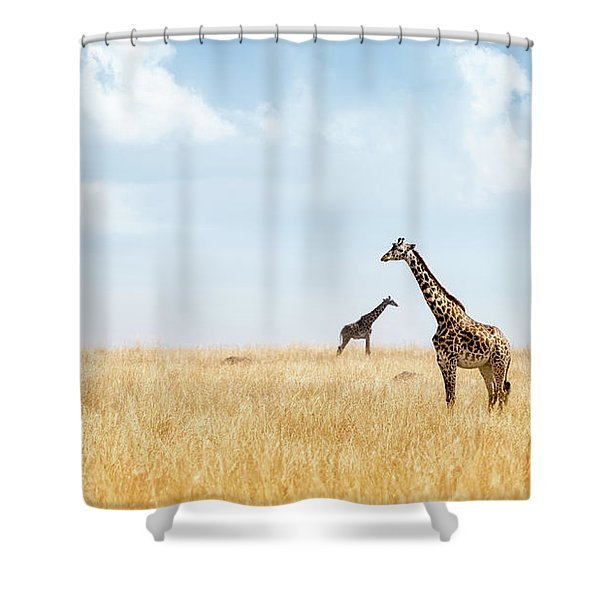 Masai Giraffe In Kenya Plains Shower Curtain