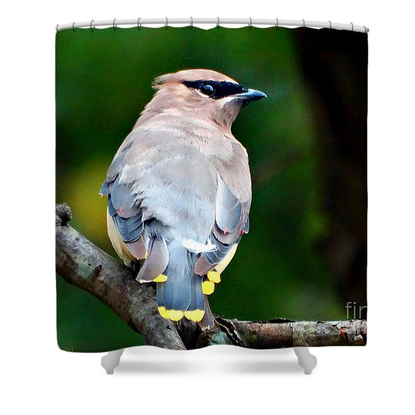 Mask And Feathers Shower Curtain