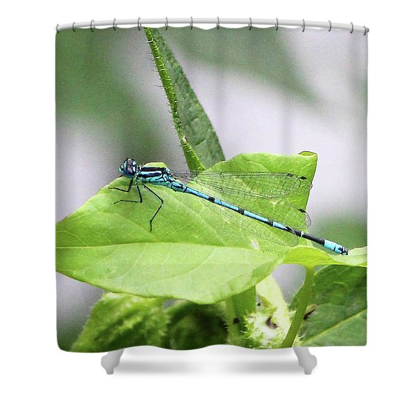 Mayfly Shower Curtain